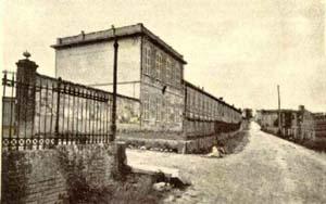 luparia1940